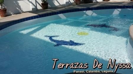 terrazas_swimmingpool_v2.jpg